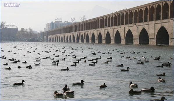 zayanderood_isfahan