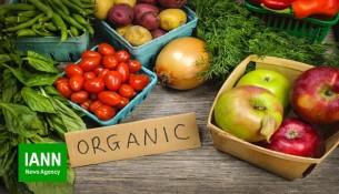 organic_produce_3