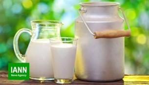 shir_labaniyat_halib_milk_2