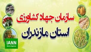 sazman_jahad_keshavarzi_mazandaran_sari